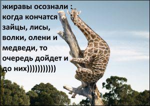 be11bd034ebe4f87708e30a056867aa6